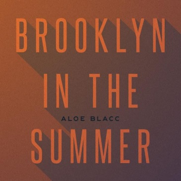 Aloe Blacc (Brooklyn In The Summer)