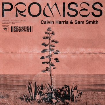 Calvin Harris & Sam Smith (Promises)